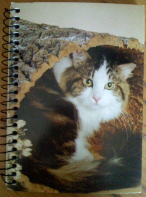 Ein Block mit Katzenbildern