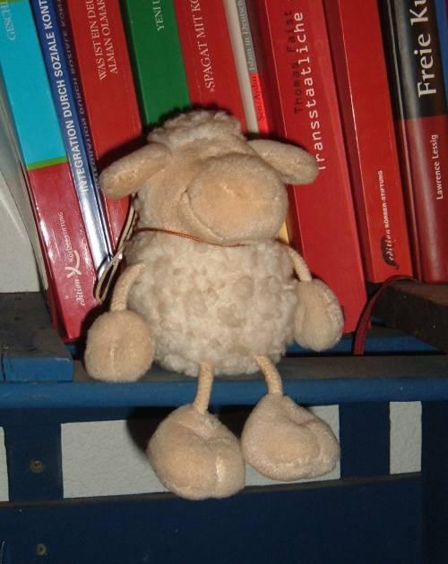 Schafe für Blogs!