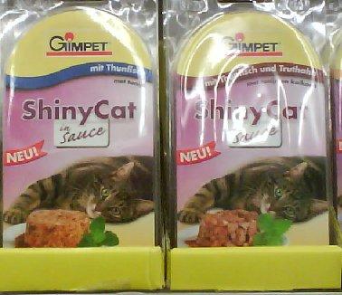 Glänzende Katze in Sauce