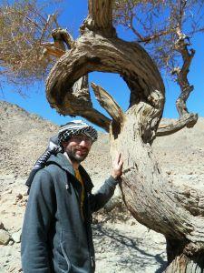 Einswerden mit dem Baum