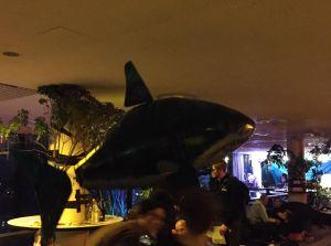 Ferngesteuert fliegender Hai, vor seinem Tod in der Abluftanlage