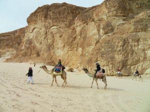 Fünf in der Wüste