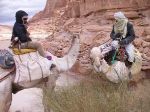 Vier in der Wüste