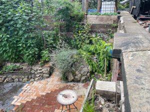 Vollkommen verwahrloster Garten